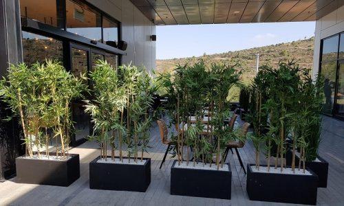 קיר הפרדה נמפיאה בעמ צמחיה מלאכותית מסעדת גפאן גפאן